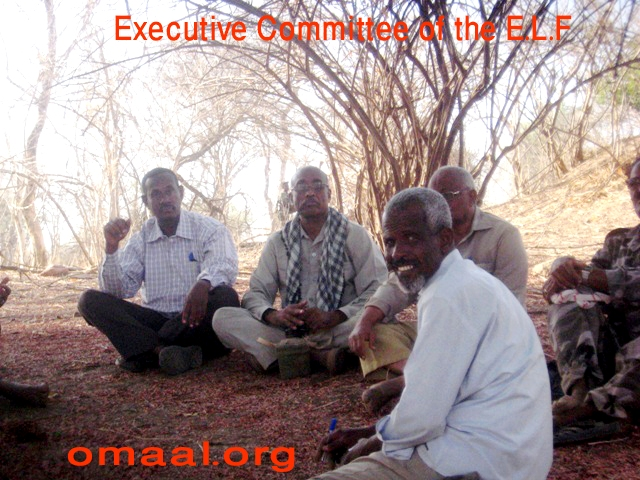 Executive Committee of the E.L.F 27 Mar o13 D.JPG