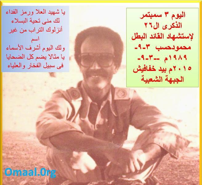 Hassab 1989-2015.jpg