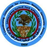 Coordinators for Eritrean NDF Adopt Important.jpg