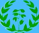 ERITREA FLAG 2011.jpg