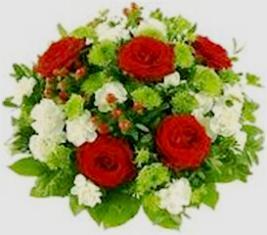 Flower 2011.jpg